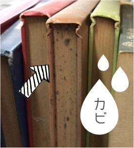 カビの生えた本
