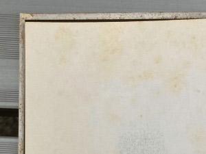 ページにシミがある絵本